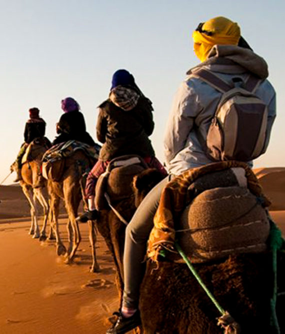 Group of travelers ride camels in desert