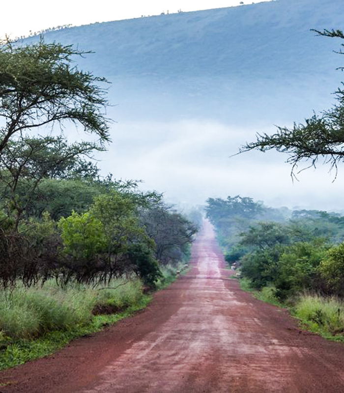 Unpaved road in Rural Africa, DR Congo